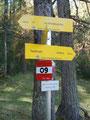 Grimmingböden (1496m). Die nächste Weggabelung vor Augen. Wo geht's weiter? Natürlich nach links Richtung Türkenkarscharte.
