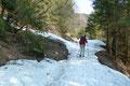 Etwa 2,5 km schlängelte sich die leicht ansteigende Forststraße fortan weiter bergwärts, wusste ich aus einigen Tourenbeschreibungen.  Mit zunehmender Höhe tauchten in den vom Schatten geprägten Stellen schnell die ersten Schneefelder auf.