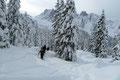 … stapfte unsere heutige Schneeschuhtruppe durch den jetzt etwas flacheren Winterwald in östliche Richtung dem Ziel entgegen.