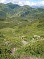 Die Latschenfelder hinter mir gelassen führte mich der Wegverlauf über den steinigen, von Heidelbeersträucher gesäumten Steig weiter talwärts.