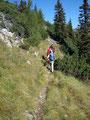 ... und schon waren wir am Bergkamm des Reiting Massivs angekommen. Von nun an gings mal auf mal ab einen steinigen Wandersteig durch unzählige Latschen hindurch entlang Richtung Kahlwandspitze.