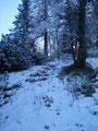 Und schon ging es weiter und weiter über den schneebedeckten Steig nach oben.