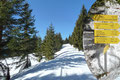 Nun drehten wir nicht der Beschilderung Gwendlingstein Südanstieg nach rechts ab, sondern folgten weiter dem markierten Sommerweg nach Norden Richtung Feldl in den Wald hinein. Die erste tief verschneite Forststraße wurde geradlinig gequert, …