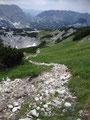 Der anfangs steinige Gipfelsturm wurde abgelöst durch einen erdigen Wandersteig.