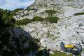 Vorbei an messerscharfen Karren und Dolinen näherten wir uns dem 2107m hohen Widerlechnerstein, dem Vorgipfel des Warschenecks.