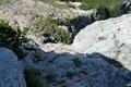 Teils im Fels nach Griffen suchend, teils am Seilverlauf haltend setzte ich meine Tritte in die Felswand.