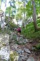 Nachdem auch die abschließende Felsbarrikade gemeistert war, folgten wir dem Steig aufwärts …