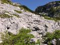 … führte uns der Weitwanderweg über den Schutthang zum Abblasbühel empor.