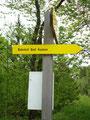 Wir wanderten jedoch nicht auf der Asphaltstrasse sondern rechts davon im Wald auf einer weiteren Forstrasse Richtung Bahnhof.