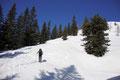 … wandten uns in einem Linksbogen den steilen Westhanges des östlichen Mayrwipfl zu.