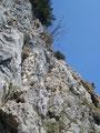 So, nun war es aber soweit! Der erste Eindruck auf den gut seilversichterten Einstieg in den Klettersteig. Etwa 30m, fast senkrecht nach oben, waren zu überwinden.
