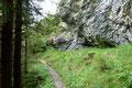 Zuerst drehte sich der Wegverlauf unterhalb einer Felswand herum und anschließend unter sattem grünen Blätterdach durch den Wald abwärts, bis …
