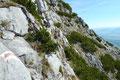 Die eingelegte kurze Pause nutze ich erneut für einen Rückblick. Mich faszinierte einfach die Expedition durch dieses wilde Felsgelände derartig.
