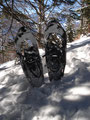 Nach wenigen Metern war ich am Schneeschuh- oder Tourenschiparkplatz angekommen. Hier musste man die Wintersportutensilien ablegen und …