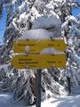 Die letzten 20 Min. zum Gipfel standen uns noch bevor, wie dieser Wegweiser erkennen ließ.