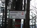 Nun trafen wir auf den von Losenstein einmündeten Nagelschmiedweg. Wir hielten uns bei dieser Weggabelung rechts Richtung unserem Ziel, den Schieferstein.