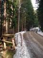 ... kamen wir unserem Tagesziel, den Gipfel des Pleschberges, immer näher.