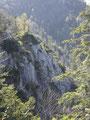 ... weiter schlängelt sich die Forststraße entlang Felsformationen ...