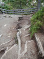 Immer und immer wieder über die Stufen empor, erreichte man in 30 Minuten den Alpinsteig.