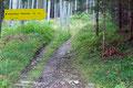 """Nun traf ich auf eine Forststraße mit einer Weggabelung. Hier musste man sich endgültig entscheiden: Links der Forststraße folgend Variante """"Markussteig"""" oder rechts Südwandsteig (""""Schrabachersteig"""").  Ich jedenfalls ging rechts weiter."""