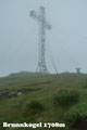 Urplötzlich, wie aus dem Nichts tauchte nach etwa 2,5 Std. das 14m hohe Gipfelkreuz des Brunnkogels vor uns auf. Ein wahrlich toller und empfehlenswerter Anstieg, für Ortskundige und Freunde abseits abgelutschter Pfade, war Vergangenheit.