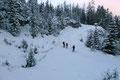 Im Sausetempo erreichten wir erneut die felsige Mulde unterhalb des Lärchkogels, wo sich der Abstiegsweg vom Anstiegsweg trennte, denn wir suchten nämlich jetzt den direkten Weg nach unten.