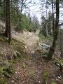 Wiederum führte mich der Steig nur mäßig ansteigend meinem Tagesziel, der Hubertushütte, näher.