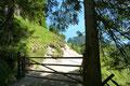 """Nach einem """"gemütlichen"""" einstündigen Aufstieg mit 600m Höhenunterschied durch den Wald wurde ein Gatterl erreicht, das auf meine Lieblingstiere, die """"Kulifanten"""" hinwies."""