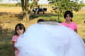 Roma wedding, Boljevci (Serbia), August 2009