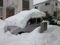 お隣さんの車が・・・