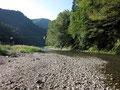 朝の河原は気持ちがいい。