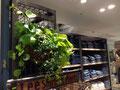 Lee Japan Shop