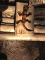 Salamander 2015 mit der der Liv-Ullman Schule Klasse 10