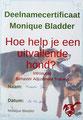 Kynologisch instructeur, hondentrainer noord-holland, uitvallen hond, monique bladder, Opleiding honden, BAT training hond, plezier voor je huisdier