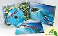 № 242 – Оригинальная упаковка (блокнот на пружине) 1 трей + карман