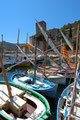 Barques Catalanes - Collioure