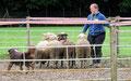 Herding Clinic