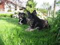 Indira und Nora (13 Jahre)