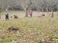 林間散策コース 15番