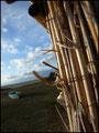 Etang de Canet © Tous droits réservés - Crédit photo Mr ToNi D FLEUTER