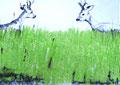 """2009 """"wild gezeichnet 8"""" A4 Mischtechnik auf Papier"""