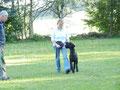 ideal ist die Schulter des Hundes auf Kniehöhe