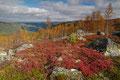På fjellet ved / Auf dem Fjell bei Rjukan