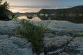 Stille kveld ved / Stiller Abend am Fossingfjord, Kragerø