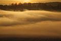 Nebel im Gjerpensdal / Tåke i Gjerpensdalen, Skien