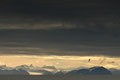 Kveldsstemning over Isfjorden / Abendstimmung am Isfjord