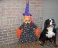 Mon 1er Halloween, même pas peur de la sorcière