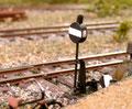 Weichenbau VI: Das Weichensignal. Die Scheibe wird von der Stellschwelle aus bedient. Der Weichenstellhebel ist funktionslos