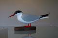 Sterne pierregarin oiseau en bois peint