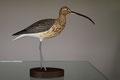 courlis cendré sculpture d'oiseau en bois sculpté et peint à la main